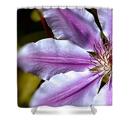 Sweet Nelly Clematis Shower Curtain by Baggieoldboy