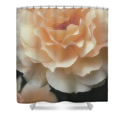 Shower Curtain featuring the photograph Sweet Peach Romance by The Art Of Marilyn Ridoutt-Greene
