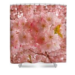 Sweet Pink- Holmdel Park Shower Curtain