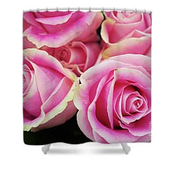 Sweet Rose For All The Lovely Ladies Who Comment On My Work Shower Curtain