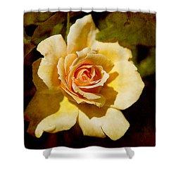 Sweet Rose Shower Curtain