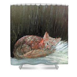 Shower Curtain featuring the painting Sweet Slumber by Trilby Cole
