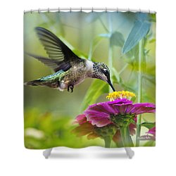 Sweet Success Hummingbird Square Shower Curtain