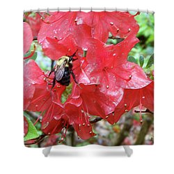 Sweet To Be An Azalea Tree Shower Curtain