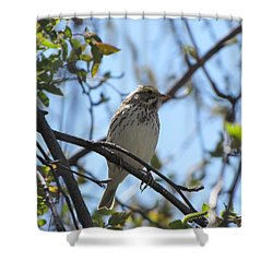 Sweetest Song Shower Curtain