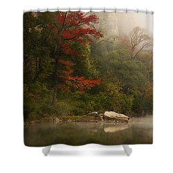 Sweetgum In The Mist At Steel Creek Shower Curtain by Michael Dougherty