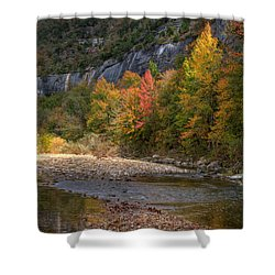 Shower Curtain featuring the photograph Sweetgums At Steel Creek  by Michael Dougherty