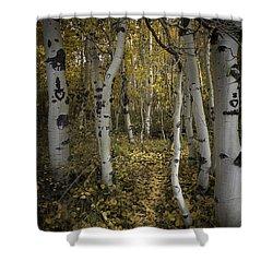 Sweetheart Trail Shower Curtain