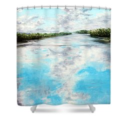 Swept Away Shower Curtain by Meaghan Troup
