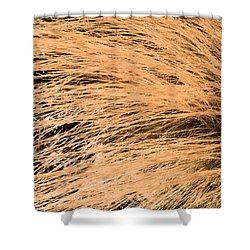 Swept Shower Curtain