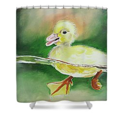 Swimming Duckling Shower Curtain