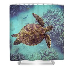 Swimming Honu From Above Shower Curtain