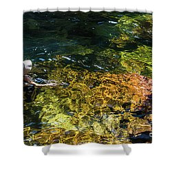 swimming in the Buley Rockhole waterfalls Shower Curtain