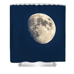 Swimming In The Deep Blue  Shower Curtain