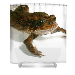 Shower Curtain featuring the digital art Swimming Toad by Barbara S Nickerson