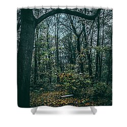 Swing Shower Curtain