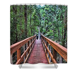Swing Bridge Shower Curtain