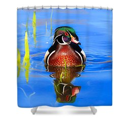 Swirls In The Reeds Shower Curtain by Lynn Hopwood