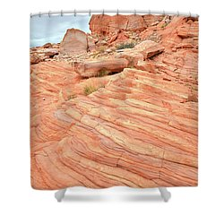 Shower Curtain featuring the photograph Swirling Sandstone Color In Valley Of Fire by Ray Mathis