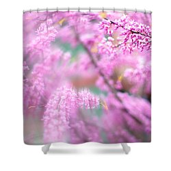 Swirls Of Spring Shower Curtain