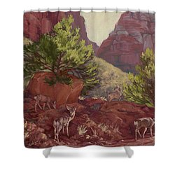 Switchback Stop For Wildlife Shower Curtain