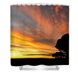 Sydney Sunset 10-06 Shower Curtain