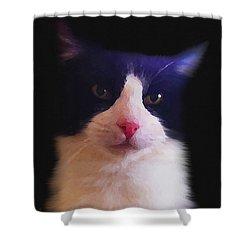 Sylvester Tuxedo Cat Shower Curtain