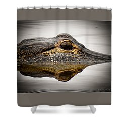 Symmetry And Reflection Shower Curtain