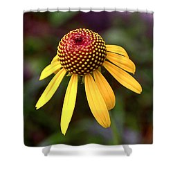 Symmetry Of Nature 015 Shower Curtain by George Bostian
