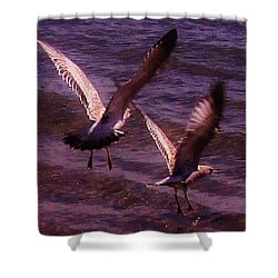 Synchronized Landing Shower Curtain