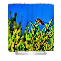 Syrphid Fly  Shower Curtain