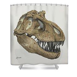 T. Rex Skull 2 Shower Curtain
