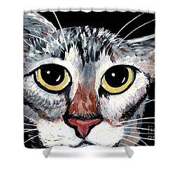 Tabby Eyes Shower Curtain by Elaine Hodges