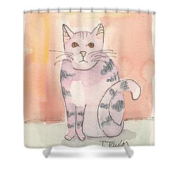 Shower Curtain featuring the painting Tabby by Terry Taylor