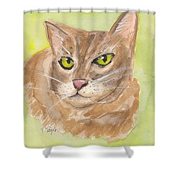 Tabby With Attitude Shower Curtain