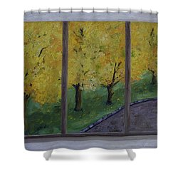Tabebuias In Full Bloom Shower Curtain