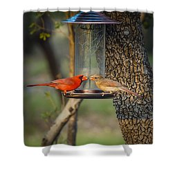 Shower Curtain featuring the photograph Table For Two by Debbie Karnes