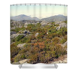 Table Rock Summit Shower Curtain