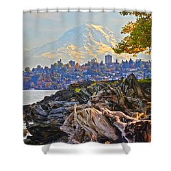 Tacoma In The Fall Shower Curtain