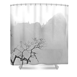 Taft Point In Mist Shower Curtain