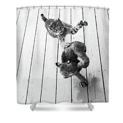 Tag Youre It Shower Curtain
