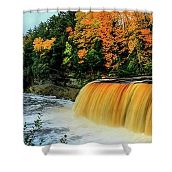 Tahquamenon Falls 2 Shower Curtain