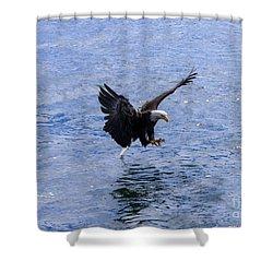 Tail Landing Shower Curtain