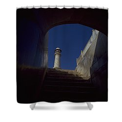 Taj Mahal Detail Shower Curtain