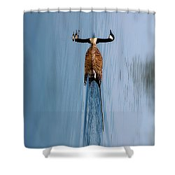 Take A Second Gander Shower Curtain