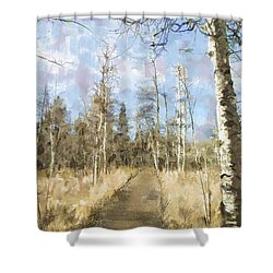 Take A Walk Shower Curtain by Annette Berglund