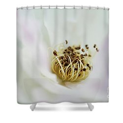 Take Me Insight Tranquillity Shower Curtain