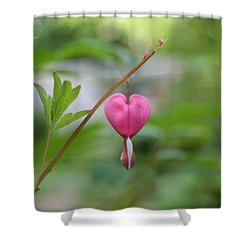 Shower Curtain featuring the digital art Take My Heart by Barbara S Nickerson
