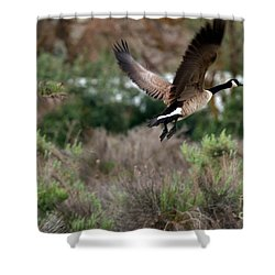 Shower Curtain featuring the photograph Take Off by Robert Bales