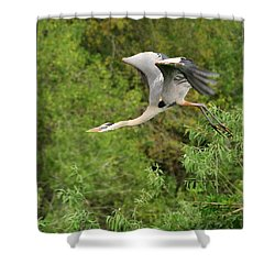 Shower Curtain featuring the photograph Take Off by Shari Jardina